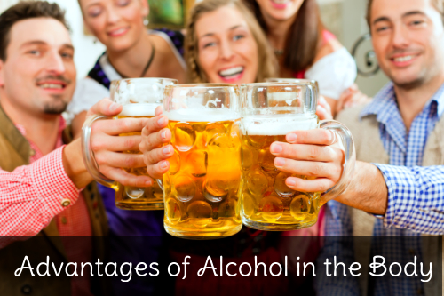 Advantages of Alcohol in the Body